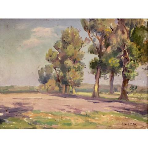 Teodor Ziomek (1874 Skierniewice – 1937 Warszawa)
